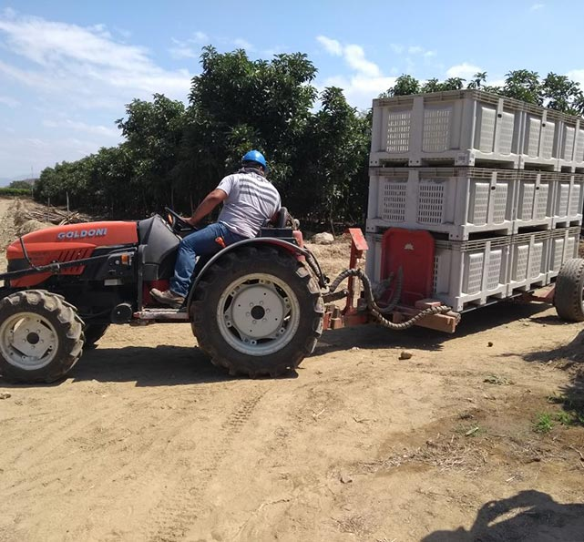 servicios agricolas